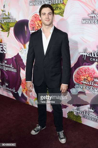 Actor Steve R McQueen attends Hallmark Channel and Hallmark Movies and Mysteries Winter 2018 TCA Press Tour at Tournament House on January 13 2018 in...