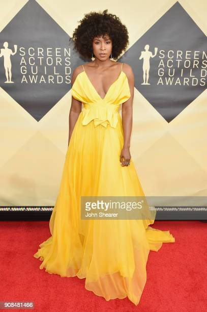 Actor Sydelle Noel attends the 24th Annual Screen Actors Guild Awards at The Shrine Auditorium on January 21 2018 in Los Angeles California
