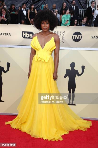 Actor Sydelle Noel attends the 24th Annual Screen Actors Guild Awards at The Shrine Auditorium on January 21 2018 in Los Angeles California 27522_017