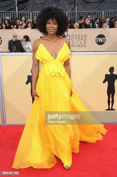 Actor Sydelle Noel attends the 24th Annual Screen ActorsGuild Awards at The Shrine Auditorium on January 21 2018 in Los Angeles California