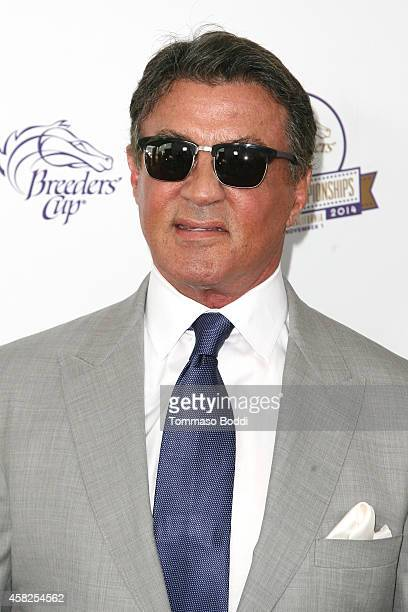 Actor Sylvester Stallone attends the 2014 Breeders' Cup World Championships held at the Santa Anita Park on November 1 2014 in Arcadia California