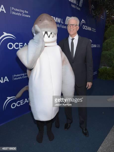Actor Ted Danson attends Oceana's Annual SeaChange Summer Party on August 16 2014 in Laguna Beach California