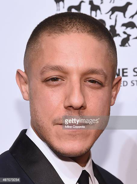 Actor Theo Rossi poses for a picture during the 2015 To The Rescue New York Gala at Cipriani 42nd Street on November 13 2015 in New York City