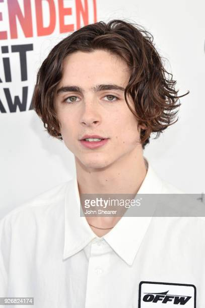 Actor Timothée Chalamet attends the 2018 Film Independent Spirit Awards on March 3 2018 in Santa Monica California