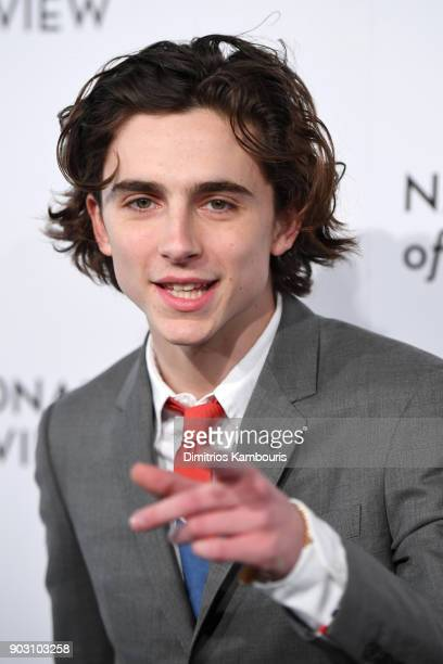 Actor Timothée Chalamet attends the National Board of Review Annual Awards Gala at Cipriani 42nd Street on January 9 2018 in New York City