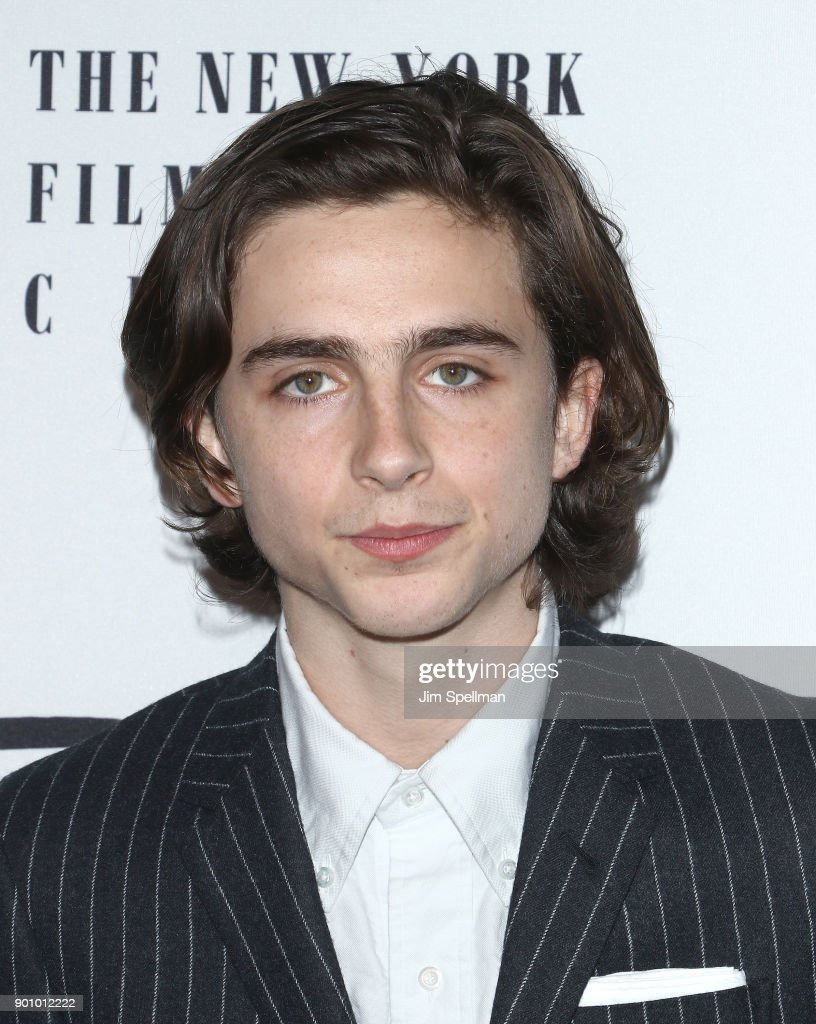 Actor Timothee Chalamet attends the 2017 New York Film Critics Awards at TAO Downtown on January 3, 2018 in New York City.