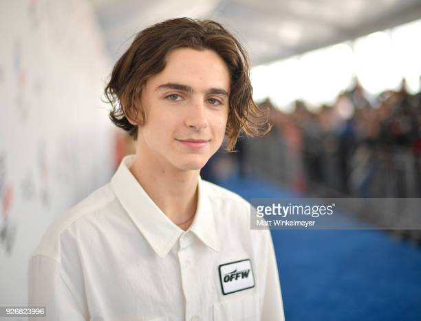 Actor Timothee Chalamet attends the 2018 Film Independent Spirit Awards on March 3 2018 in Santa Monica California