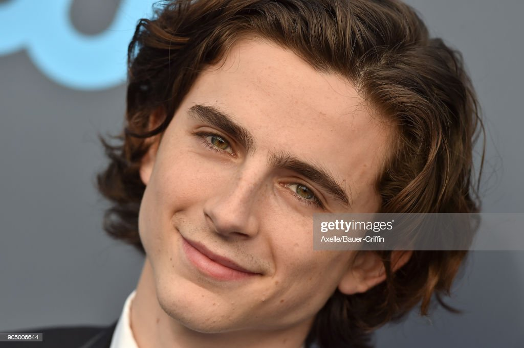 Actor Timothee Chalamet attends the 23rd Annual Critics' Choice Awards at Barker Hangar on January 11, 2018 in Santa Monica, California.