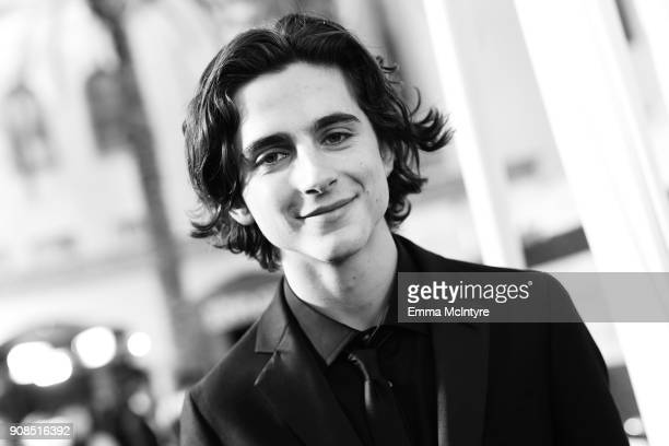 Actor Timothee Chalamet attends the 24th Annual Screen Actors Guild Awards at The Shrine Auditorium on January 21 2018 in Los Angeles California...