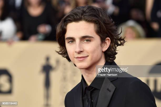 Actor Timothee Chalamet attends the 24th Annual Screen Actors Guild Awards at The Shrine Auditorium on January 21 2018 in Los Angeles California