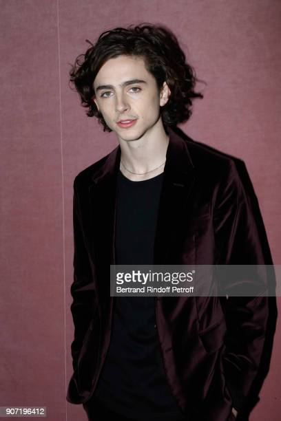 Actor Timothee Chalamet attends the Berluti Menswear Fall/Winter 20182019 show as part of Paris Fashion Week on January 19 2018 in Paris France