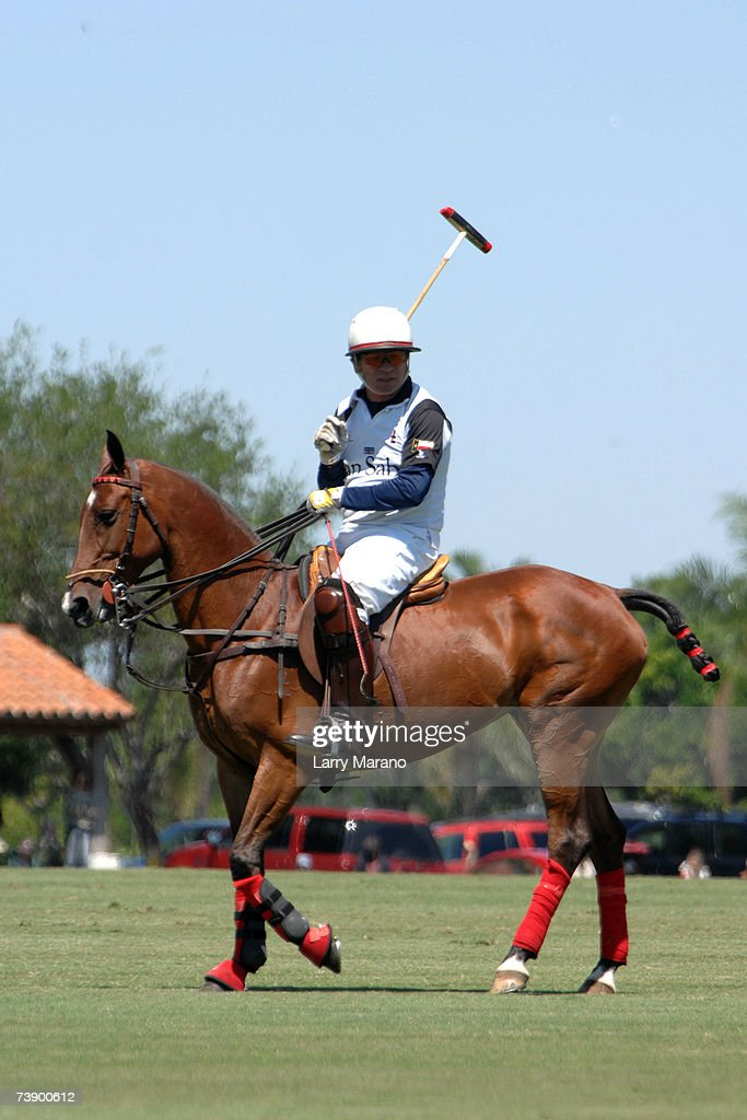 Tommy Lee Jones Competes At International Polo Club Palm Beach : News Photo
