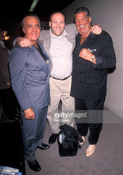 Actor Tony Sirico and actor James Gandolfini attend the Fifth Annual Avignon New York Film Festival 'Under Hellgate Bridge' Screening Party on April...