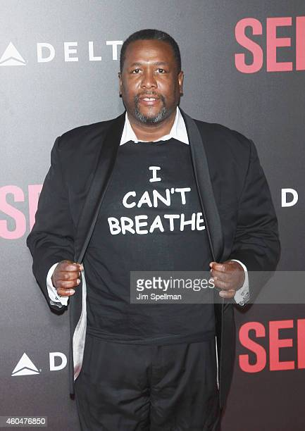 Actor Wendell Pierce attends the Selma New York Premiere at the Ziegfeld Theater on December 14 2014 in New York City