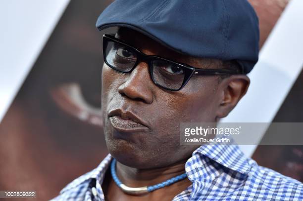Actor Wesley Snipes attends the premiere of Columbia Picture's 'The Equalizer 2' at TCL Chinese Theatre on July 17 2018 in Hollywood California