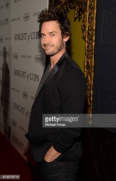 Actor Will Kemp attends the Los Angeles Premiere Of Broad Green Pictures' 'Knight Of Cups' on March 1 2016 in Los Angeles California