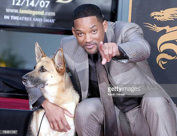 Actor Will Smith poses with Abby the dog from I Am Legend as he is honored with a hand and footprint ceremony at Grauman's Chinese Theatre December...
