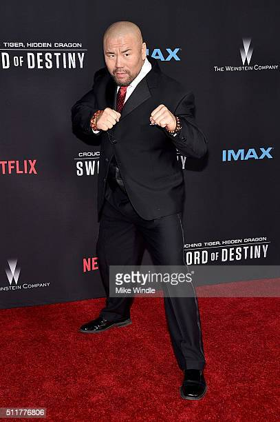 Actor Woon Young Park attends the premiere of Netflix's Crouching Tiger Hidden Dragon Sword Of Destiny at AMC Universal City Walk on February 22 2016...