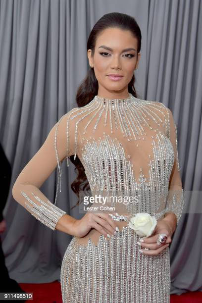 Actor Zuleyka Rivera attends the 60th Annual GRAMMY Awards at Madison Square Garden on January 28 2018 in New York City
