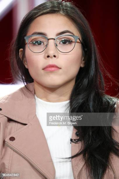 Actor/executive producer Anna Akana of 'Youth Consequences' speaks onstage during the YouTube portion of the 2018 Winter Television Critics...