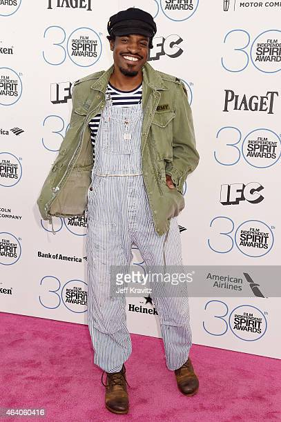 Actor/Musician Andre Benjamin attends the 2015 Film Independent Spirit Awards on February 21 2015 in Santa Monica California
