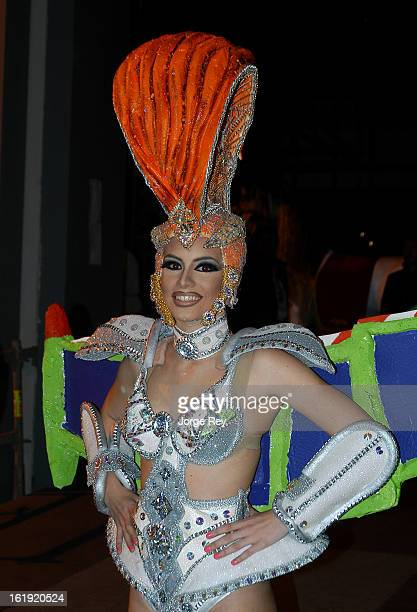 Actors attend the Drag Queen Gala during the Carnival February 14 2013 in Las Palmas de Gran Canaria Spain