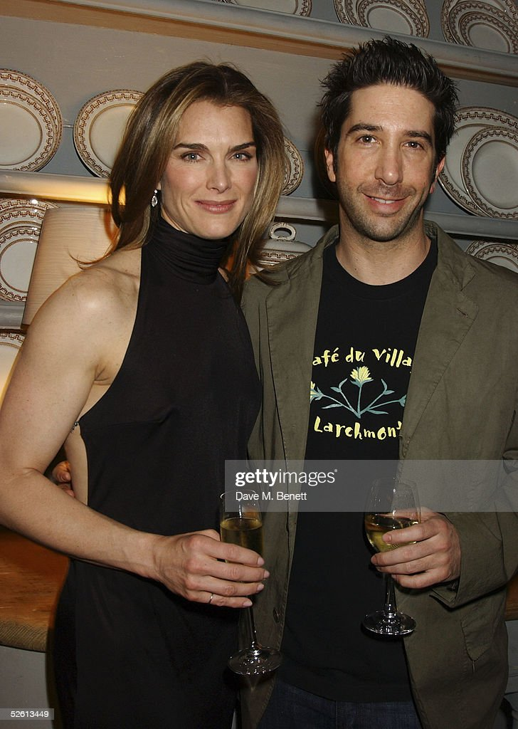 Harpers And Queen Throw Welcome Party For Brooke Shields : News Photo