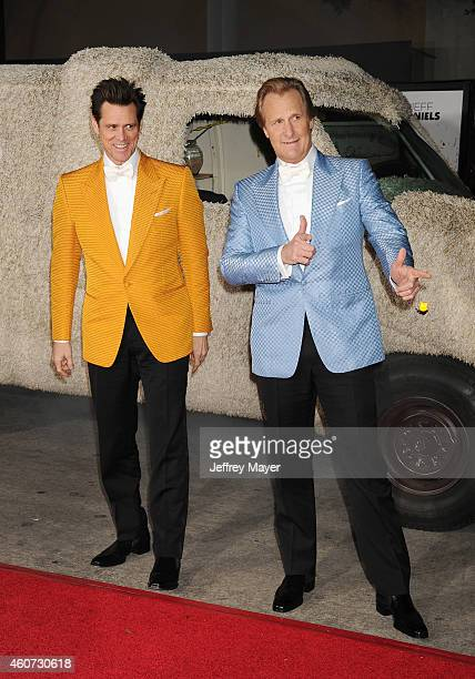 Actors Jim Carrey and Jeff Daniels arrive at the Los Angeles premiere of 'Dumb And Dumber To' at Regency Village Theatre on November 3 2014 in...