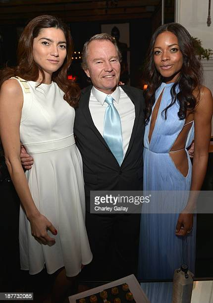 Actors John Savage and Naomie Harris attend the after party for The Weinstein Company Presents The LA Premiere Of 'Mandela Long Walk To Freedom'...