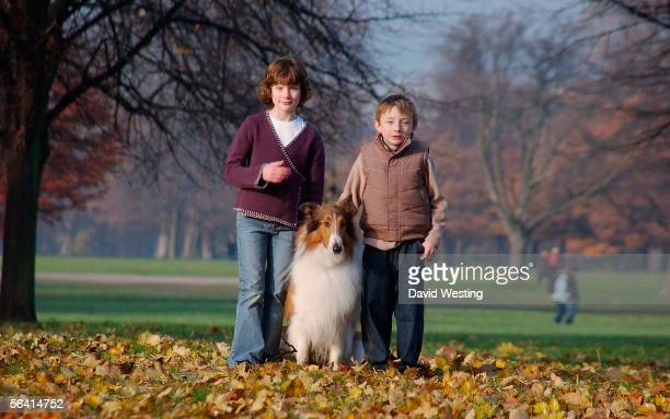 Actors Jonathan Mason and Hester Odgers pose with the dog who plays Lassie at a photocall for the new Lassie film based on Eric Knight's Lassie Come...