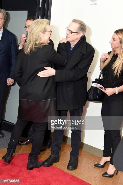 Actors Meryl Streep and Steve Buscemi attend the 'Final Portrait' New York Screening at Guggenheim Museum on March 22, 2018 in New York City.