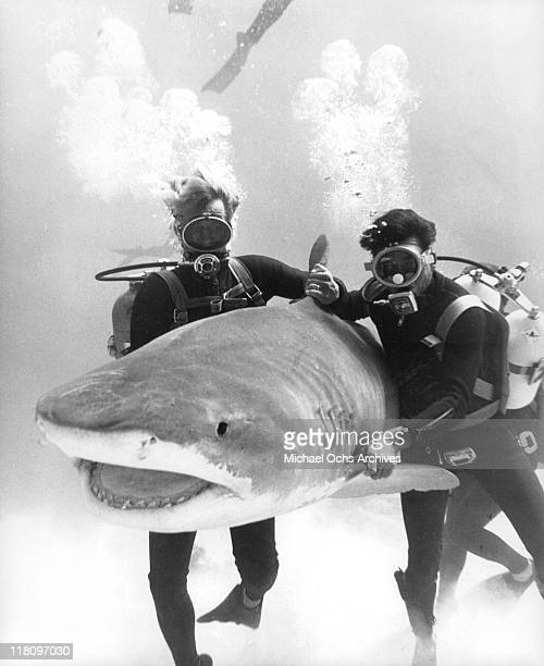 Actors underwater with shark in a scene from the film 'Thunderball' 1965