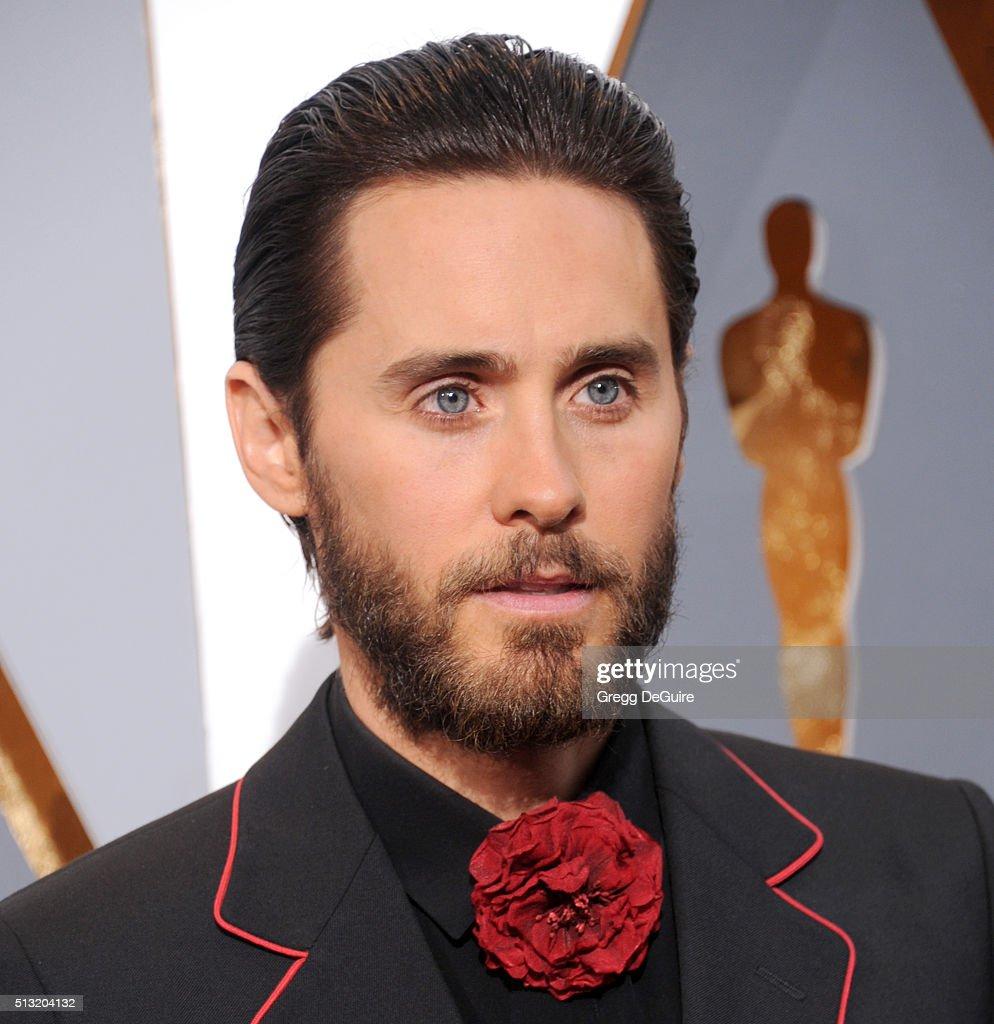 88th Annual Academy Awards - Arrivals : Foto di attualità