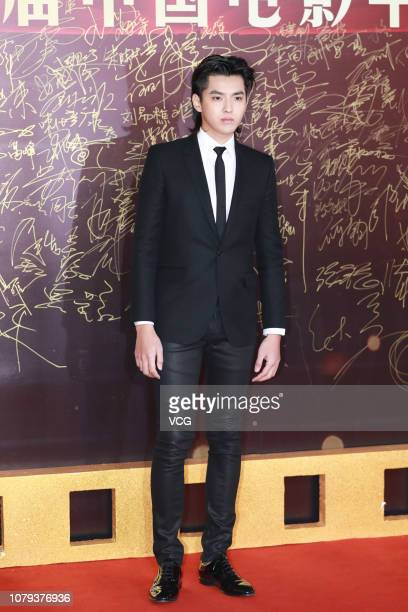 Actor/singer Kris Wu Yifan poses on the red carpet of the 17th China Huabiao Film Awards Ceremony on December 8 2018 in Beijing China