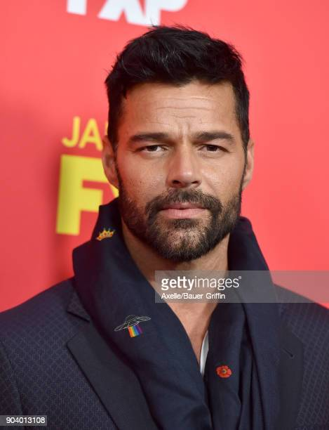 Actor/singer Ricky Martin attends the Los Angeles Premiere of 'The Assassination of Gianni Versace American Crime Story' at ArcLight Hollywood on...