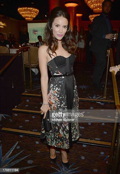 Actress Abigail Spencer attends Broadcast Television Journalists Association's third annual Critics' Choice Television Awards at The Beverly Hilton...