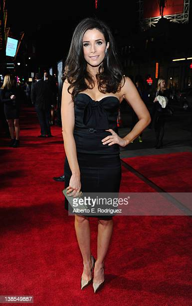 Actress Abigail Spencer attends the premiere of Twentieth Century Fox's This Means War held at Grauman's Chinese Theatre on February 8 2012 in...