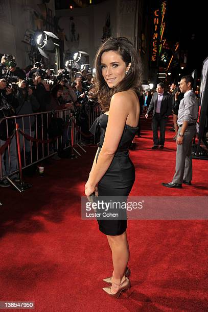 Actress Abigail Spencer attends the This Means War Los Angeles premiere held at Grauman's Chinese Theatre on February 8 2012 in Hollywood California