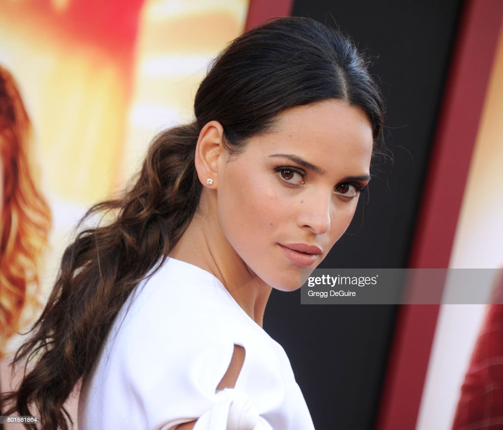"""Premiere Of Warner Bros. Pictures' """"The House"""" - Arrivals : News Photo"""