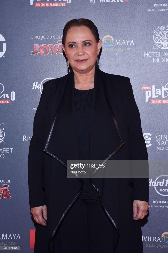 5th Platinum Ibero-American Film Awards photocall : News Photo