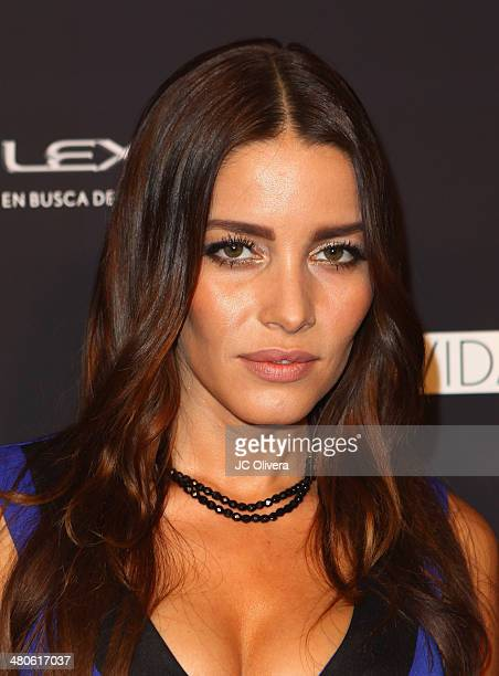Actress Adriana Fonseca attends Sabor de Lujo at Vida Lexus event celebrating latino culture in Los Angeles at Sofitel Hotel on March 25 2014 in Los...