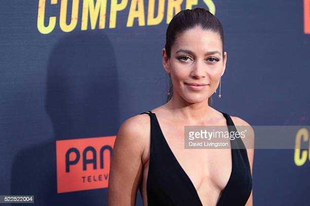 Actress Adriana Fonseca attends the premiere of Pantelion Films' 'Compadres' at ArcLight Hollywood on April 19 2016 in Hollywood California