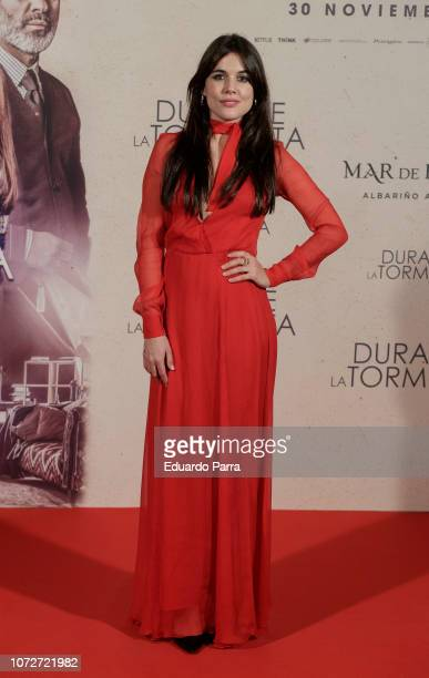Actress Adriana Ugarte attends the 'Durante la tormenta' photocall at Suecia hotel on November 26 2018 in Madrid Spain