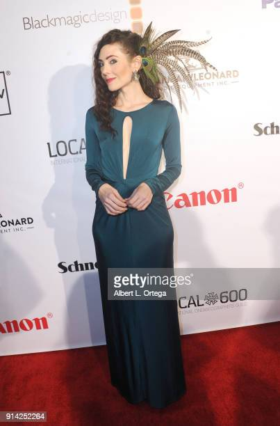 Actress Adrienne Wilkinson arrives for Society of Camera Operators Lifetime Achievement Awards held at Loews Hollywood Hotel on February 3 2018 in...