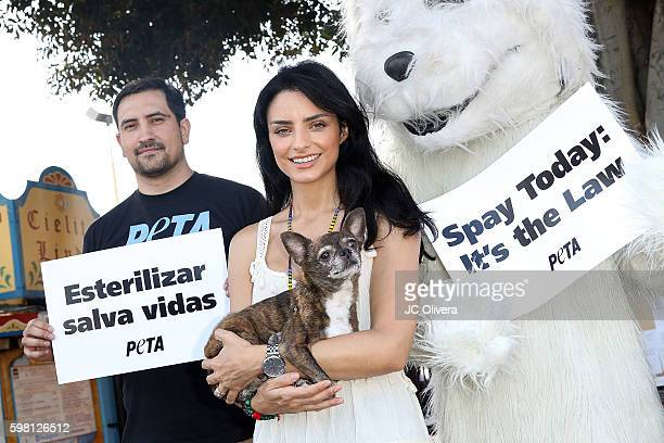 Actress Aislinn Derbez attends the unveling of the new PETA Latino Campaign at Olvera Street on August 31 2016 in Los Angeles California