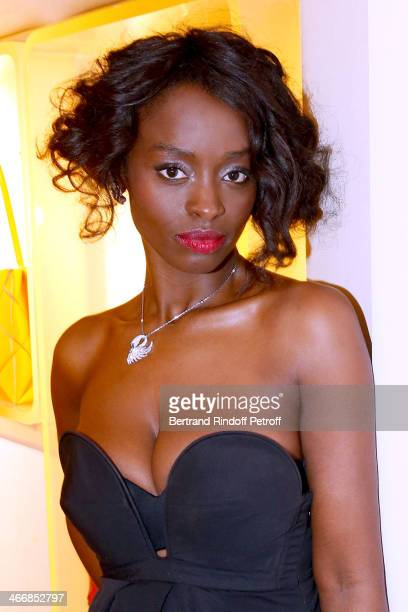 Actress Aissa Maiga attends the 'Le Paris du Tout Paris' Book written by Alexandra Senes Presentation at Maison Roger Vivier on February 4 2014 in...