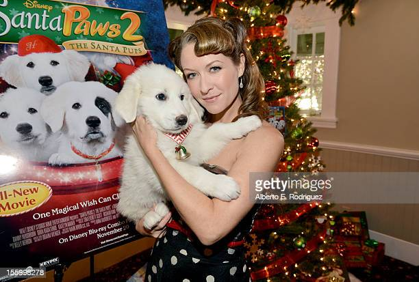Actress Ali Hillis attends the 'Santa Paws 2 The Santa Pups' holiday party hosted by Disney Cheryl Ladd and Ali Landry at The Victorian on November...