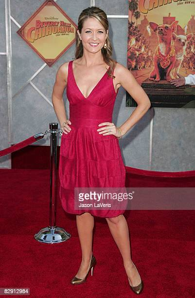 Actress Ali Hillis attends Walt Disney Pictures' premiere of 'Beverly Hills Chihuahua' at El Capitan Theater on September 18 2008 in Hollywood...
