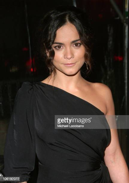 """Actress Alice Berga attends """"I am Legend"""" premiere at the WaMu Theater at Madison Square Garden on December 11, 2007 in New York City."""