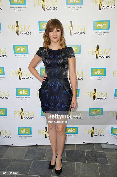 Actress Alison Haislip attends the 19th Annual Prism Awards at Skirball Cultural Center on July 16 2015 in Los Angeles California